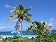 Pristine Grace Bay Beach Providenciales Turks and Caicos Islands